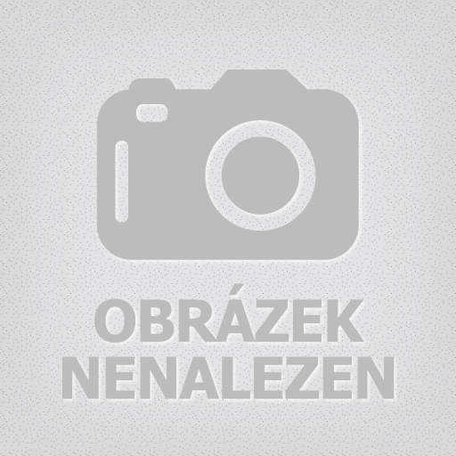 czech_team-logo
